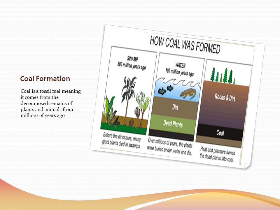 Coal Formation Coal is a fossil fuel meaning it comes from the decomposed remains of plants and animals from millions of years ago.