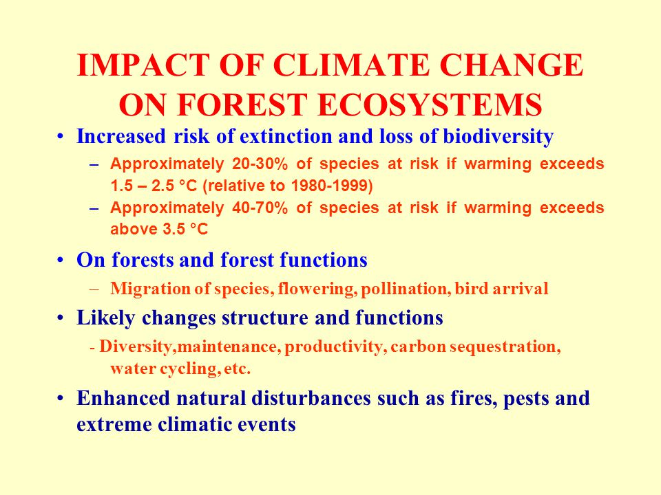 IMPACT OF CLIMATE CHANGE ON FOREST ECOSYSTEMS Increased risk of extinction and loss of biodiversity –Approximately 20-30% of species at risk if warming exceeds 1.5 – 2.5 °C (relative to 1980-1999) –Approximately 40-70% of species at risk if warming exceeds above 3.5 °C On forests and forest functions –Migration of species, flowering, pollination, bird arrival Likely changes structure and functions - Diversity,maintenance, productivity, carbon sequestration, water cycling, etc.