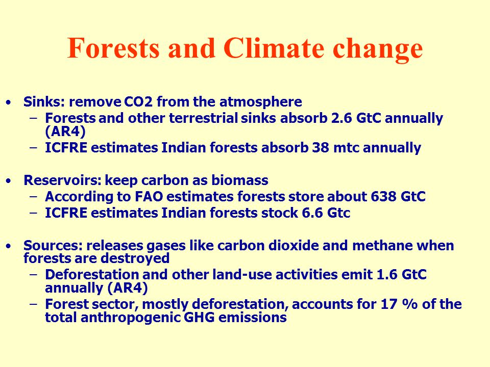 Forests and Climate change Sinks: remove CO2 from the atmosphere –Forests and other terrestrial sinks absorb 2.6 GtC annually (AR4) –ICFRE estimates I