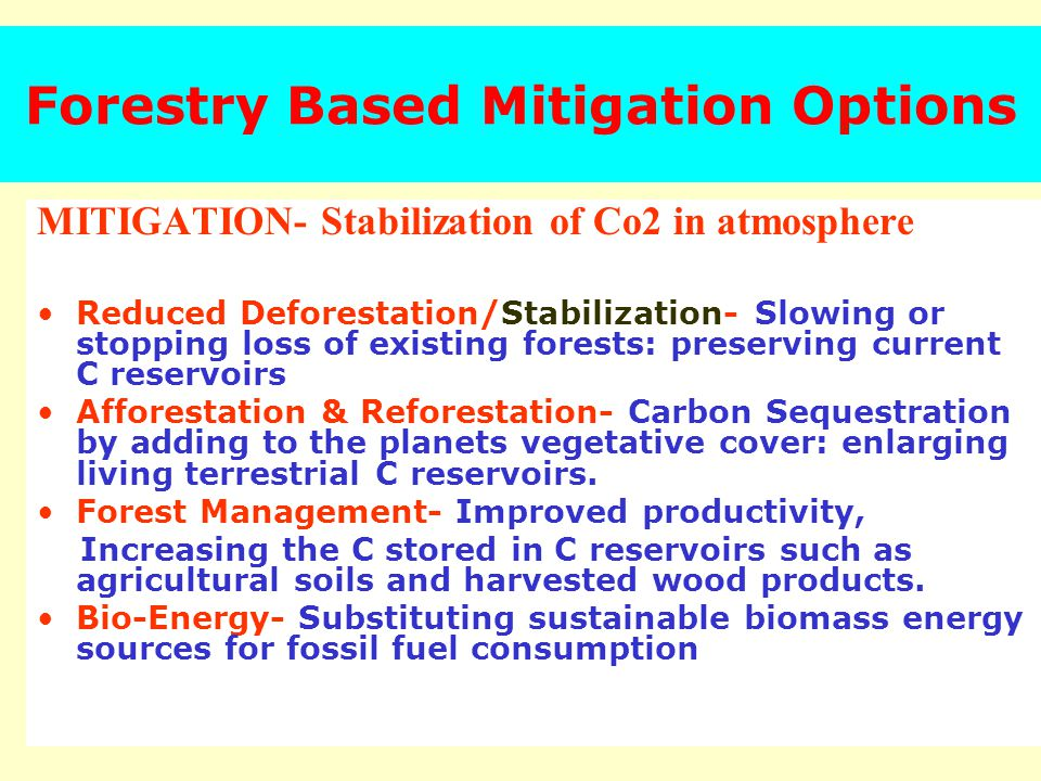 Forestry Based Mitigation Options MITIGATION- Stabilization of Co2 in atmosphere Reduced Deforestation/Stabilization- Slowing or stopping loss of existing forests: preserving current C reservoirs Afforestation & Reforestation- Carbon Sequestration by adding to the planets vegetative cover: enlarging living terrestrial C reservoirs.