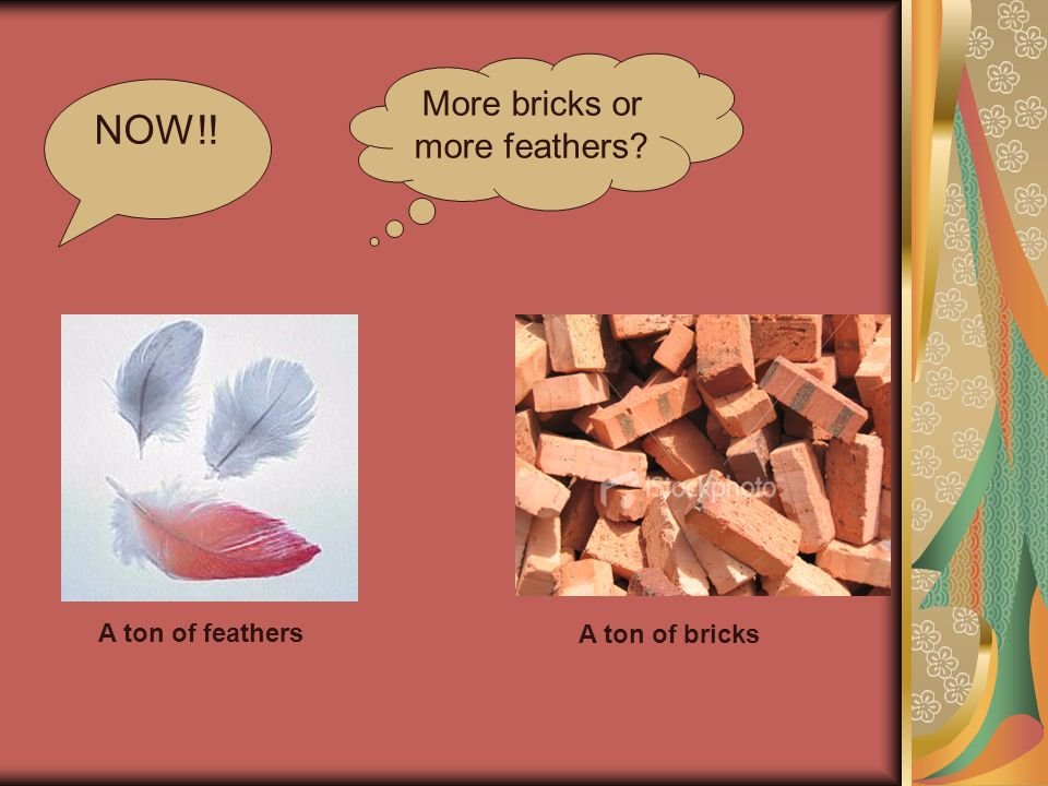 NOW!! A ton of feathers A ton of bricks More bricks or more feathers?