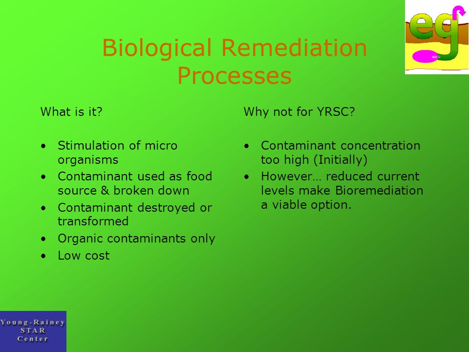 Biological Remediation Processes What is it? Stimulation of micro organisms Contaminant used as food source & broken down Contaminant destroyed or tra