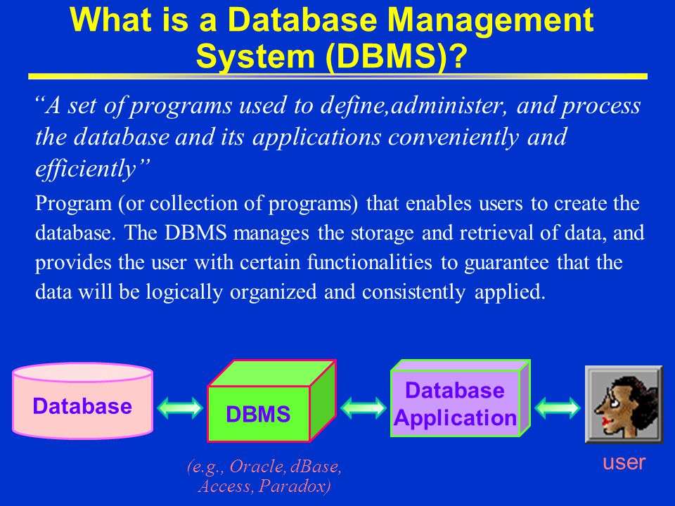 What is a Database Application.