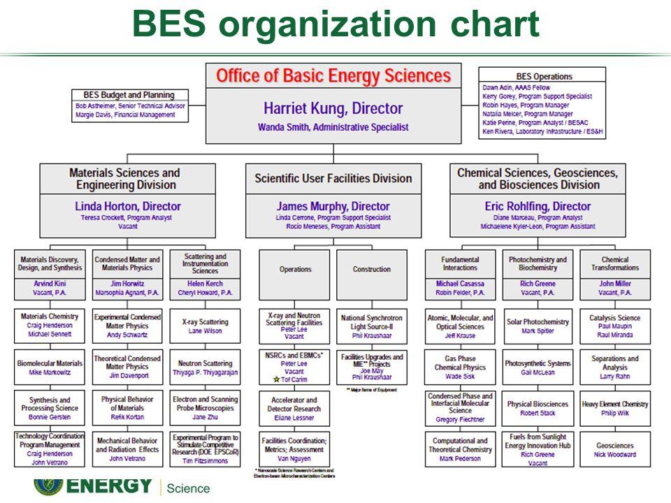 BES organization chart