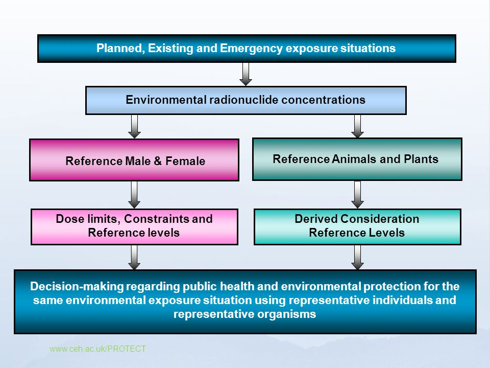 Planned, Existing and Emergency exposure situations Environmental radionuclide concentrations Reference Male & Female Dose limits, Constraints and Reference levels Reference Animals and Plants Derived Consideration Reference Levels Decision-making regarding public health and environmental protection for the same environmental exposure situation using representative individuals and representative organisms www.ceh.ac.uk/PROTECT