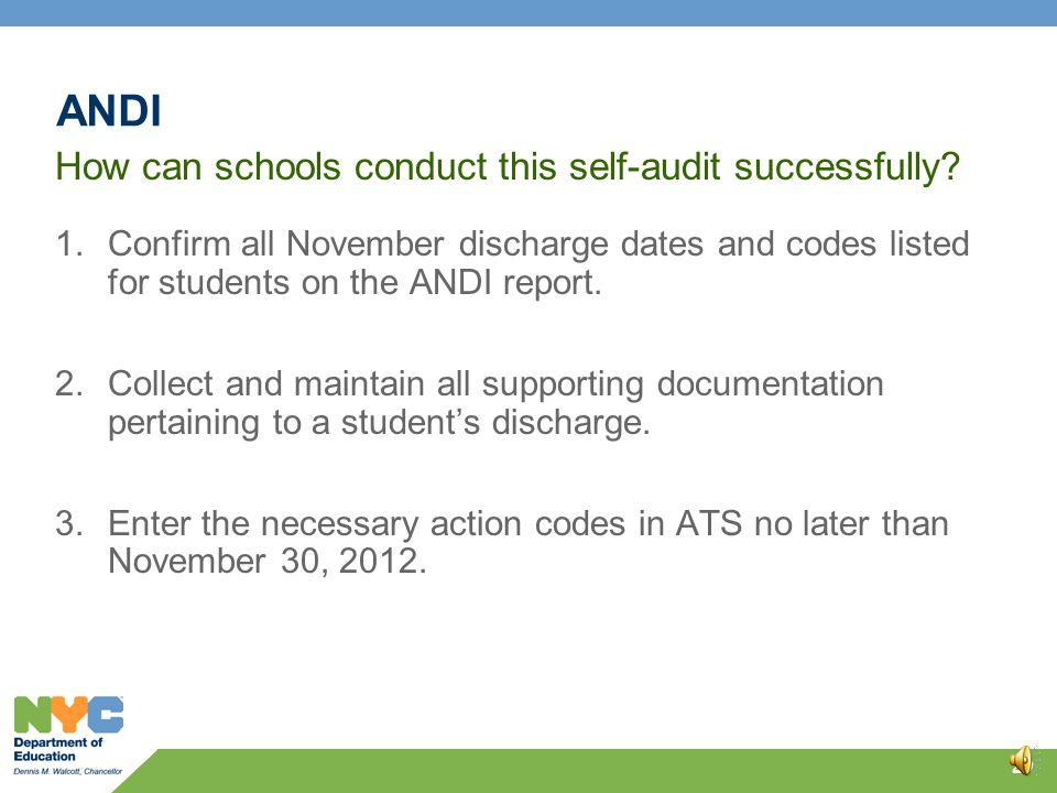 ANDI Self-Audit 28