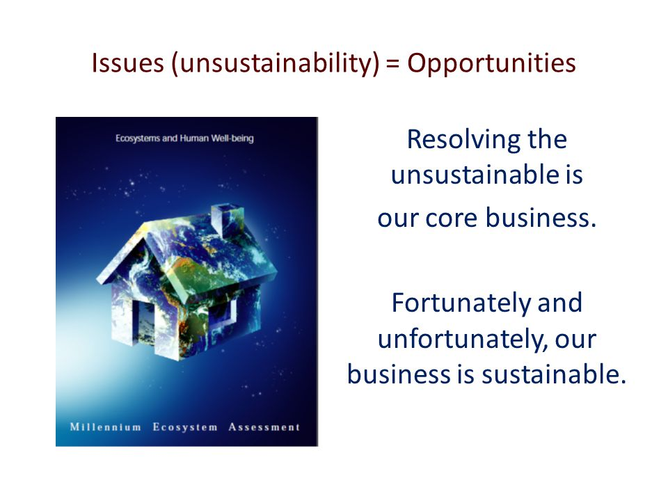 Issues (unsustainability) = Opportunities Resolving the unsustainable is our core business.