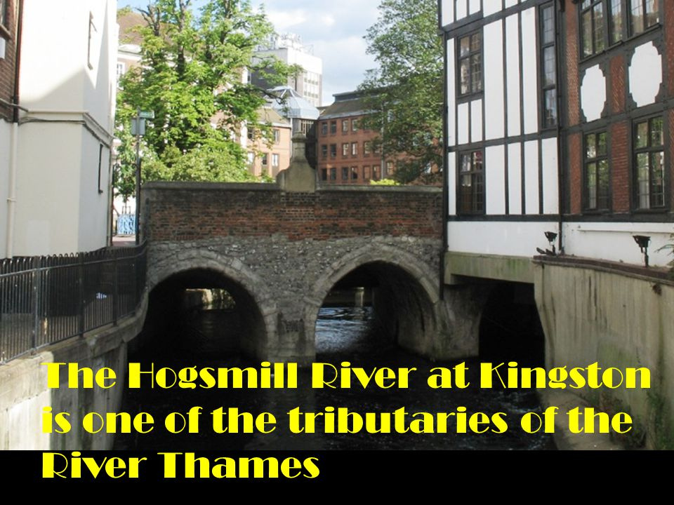 The Hogsmill River at Kingston is one of the tributaries of the River Thames