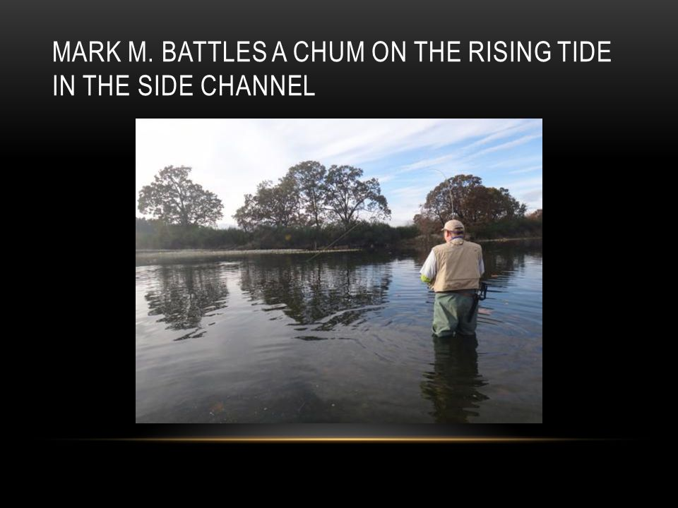 MARK M. BATTLES A CHUM ON THE RISING TIDE IN THE SIDE CHANNEL