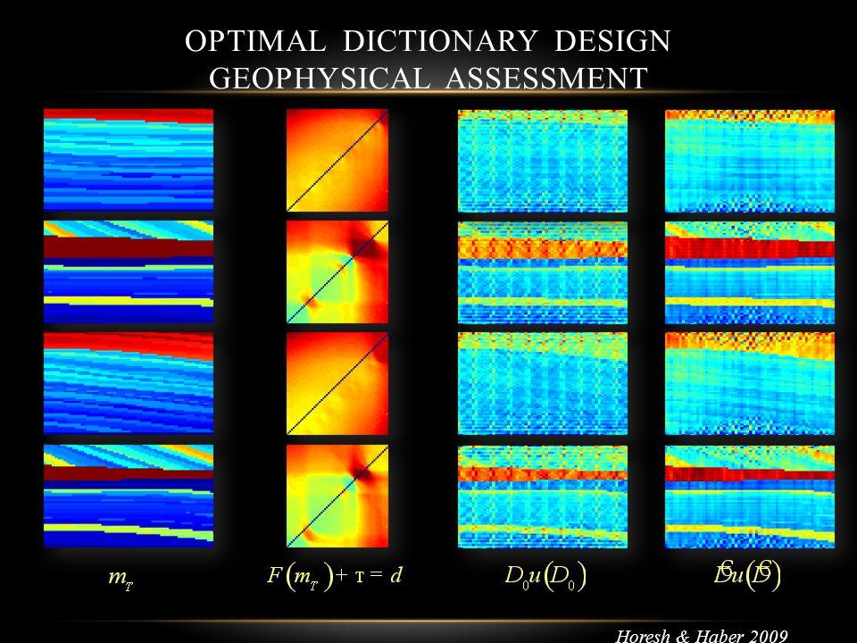OPTIMAL DICTIONARY DESIGN GEOPHYSICAL ASSESSMENT Horesh & Haber 2009