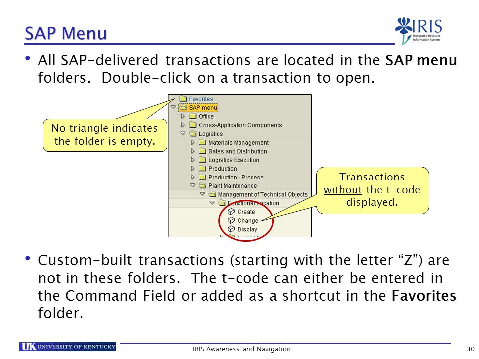 IRIS Awareness and Navigation30 SAP Menu All SAP-delivered transactions are located in the SAP menu folders.
