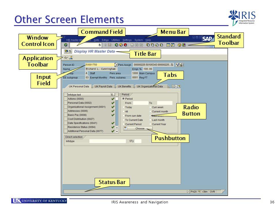 IRIS Awareness and Navigation36 Other Screen Elements Application Toolbar Title Bar Standard Toolbar Command Field Menu Bar Tabs Radio Button Input Field Status Bar Window Control Icon Pushbutton