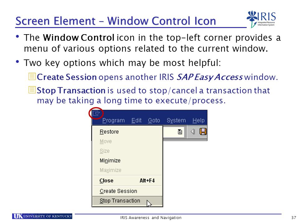 IRIS Awareness and Navigation37 Screen Element – Window Control Icon The Window Control icon in the top-left corner provides a menu of various options related to the current window.