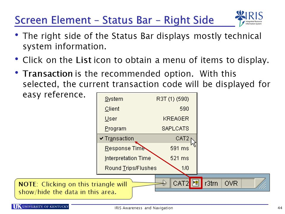 IRIS Awareness and Navigation44 Screen Element – Status Bar – Right Side The right side of the Status Bar displays mostly technical system information.
