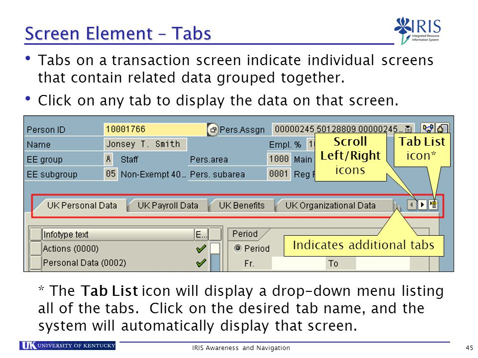 Tabs on a transaction screen indicate individual screens that contain related data grouped together.