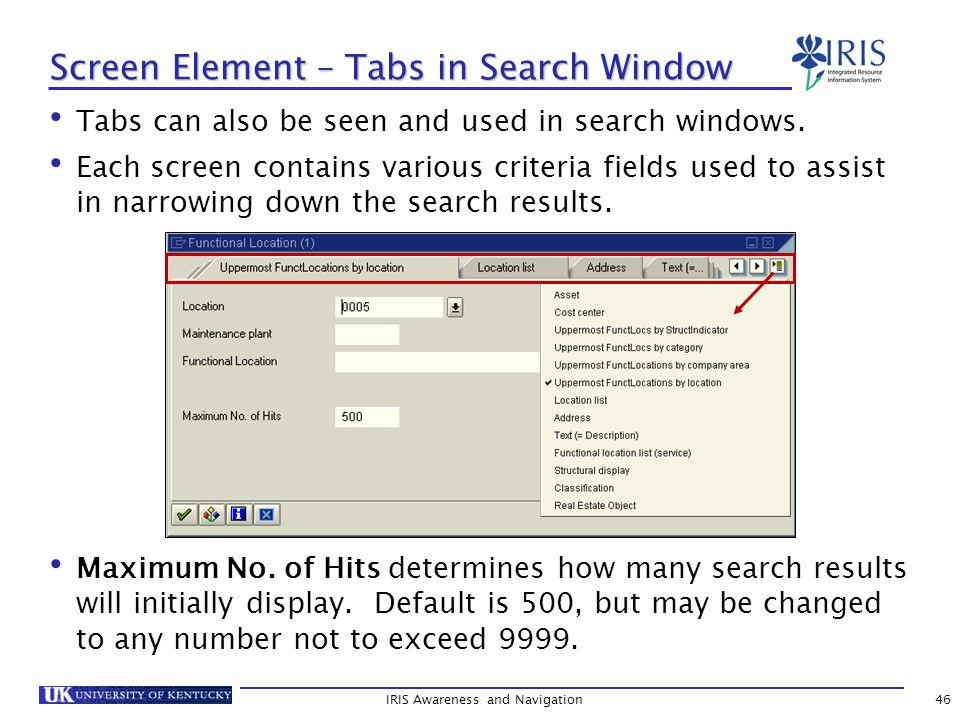 IRIS Awareness and Navigation46 Tabs can also be seen and used in search windows.