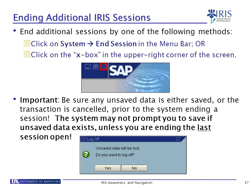 IRIS Awareness and Navigation57 Ending Additional IRIS Sessions End additional sessions by one of the following methods:  Click on System  End Session in the Menu Bar; OR  Click on the x-box in the upper-right corner of the screen.