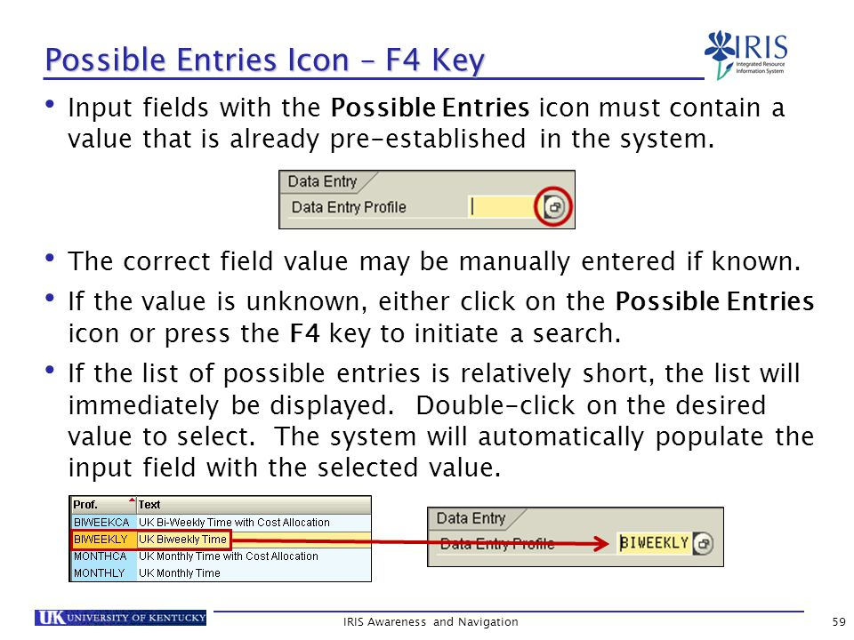 IRIS Awareness and Navigation59 Possible Entries Icon – F4 Key Input fields with the Possible Entries icon must contain a value that is already pre-established in the system.