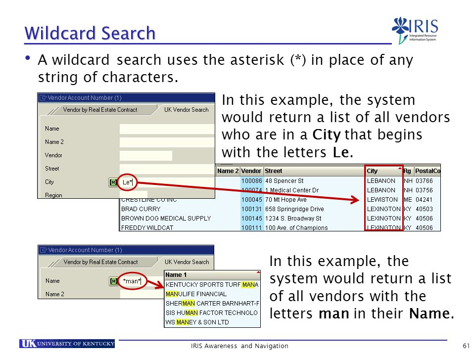 A wildcard search uses the asterisk (*) in place of any string of characters.