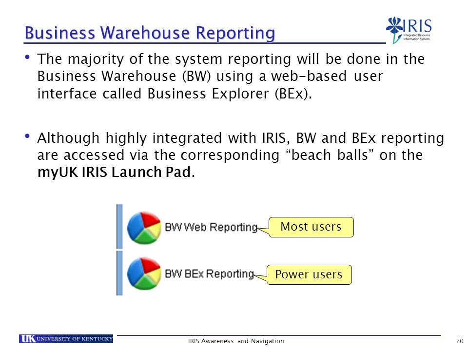 IRIS Awareness and Navigation70 Business Warehouse Reporting The majority of the system reporting will be done in the Business Warehouse (BW) using a web-based user interface called Business Explorer (BEx).