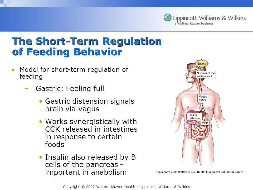Copyright © 2007 Wolters Kluwer Health | Lippincott Williams & Wilkins The Short-Term Regulation of Feeding Behavior Model for short-term regulation o