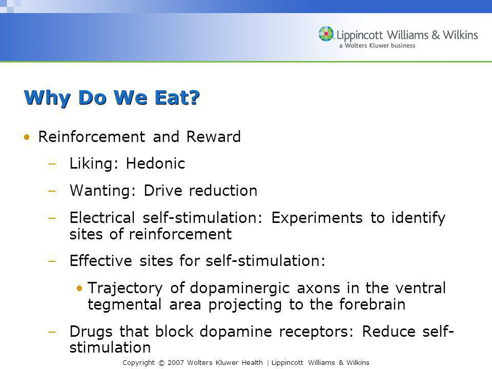 Copyright © 2007 Wolters Kluwer Health | Lippincott Williams & Wilkins Why Do We Eat? Reinforcement and Reward –Liking: Hedonic –Wanting: Drive reduct