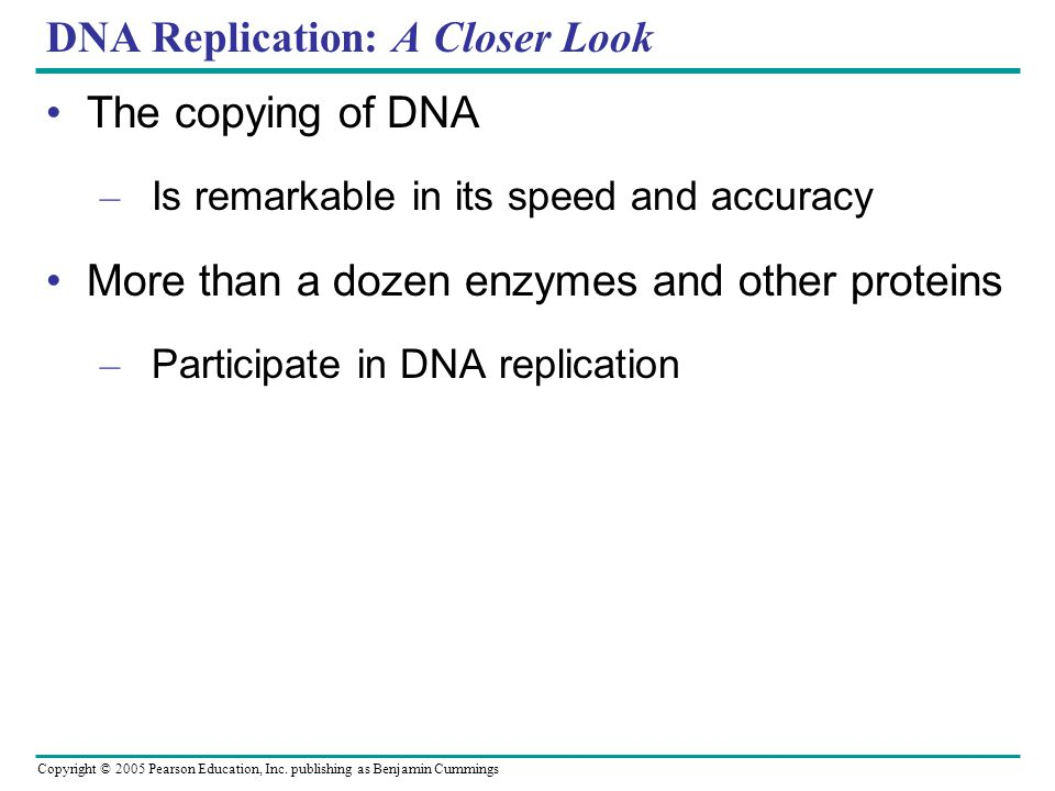 Copyright © 2005 Pearson Education, Inc. publishing as Benjamin Cummings DNA Replication: A Closer Look The copying of DNA – Is remarkable in its spee