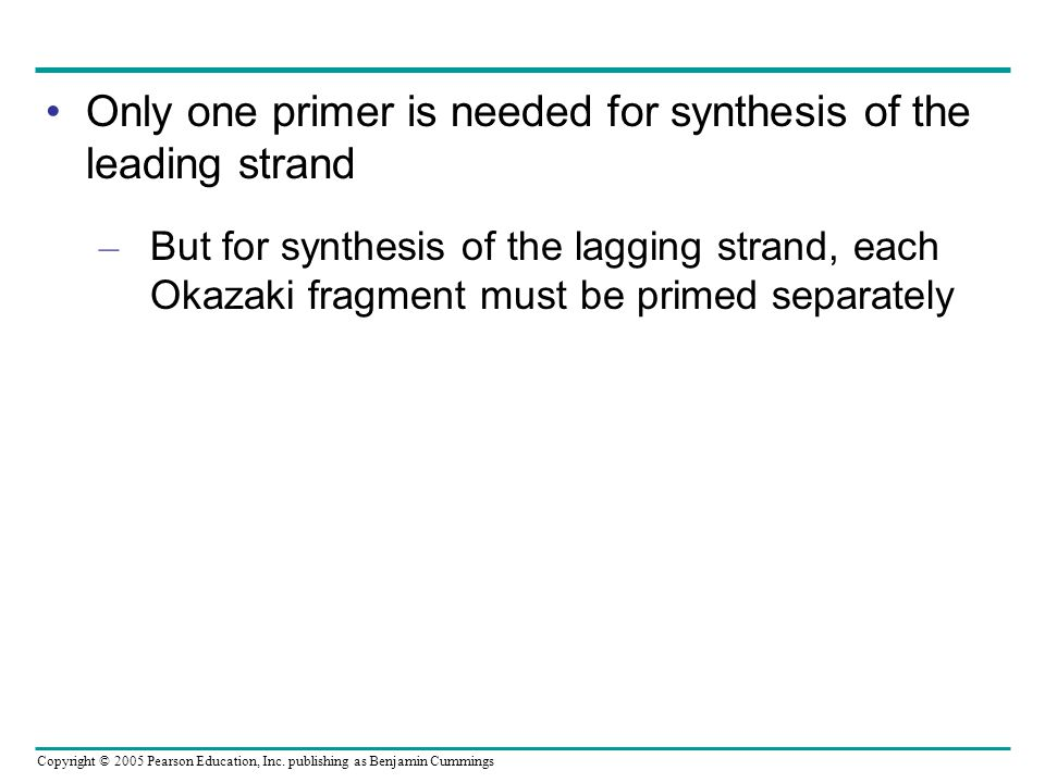Copyright © 2005 Pearson Education, Inc. publishing as Benjamin Cummings Only one primer is needed for synthesis of the leading strand – But for synth