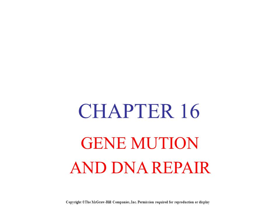 Copyright ©The McGraw-Hill Companies, Inc. Permission required for reproduction or display CHAPTER 16 GENE MUTION AND DNA REPAIR
