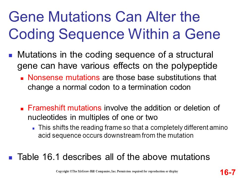 Copyright ©The McGraw-Hill Companies, Inc. Permission required for reproduction or display Mutations in the coding sequence of a structural gene can h