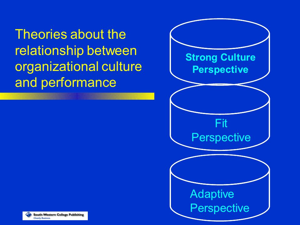 Adaptive Perspective Fit Perspective Strong Culture Perspective Theories about the relationship between organizational culture and performance
