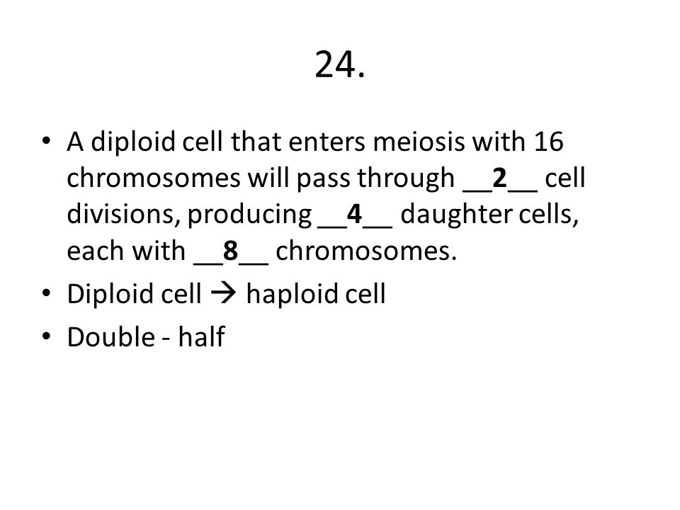 24. A diploid cell that enters meiosis with 16 chromosomes will pass through __2__ cell divisions, producing __4__ daughter cells, each with __8__ chr