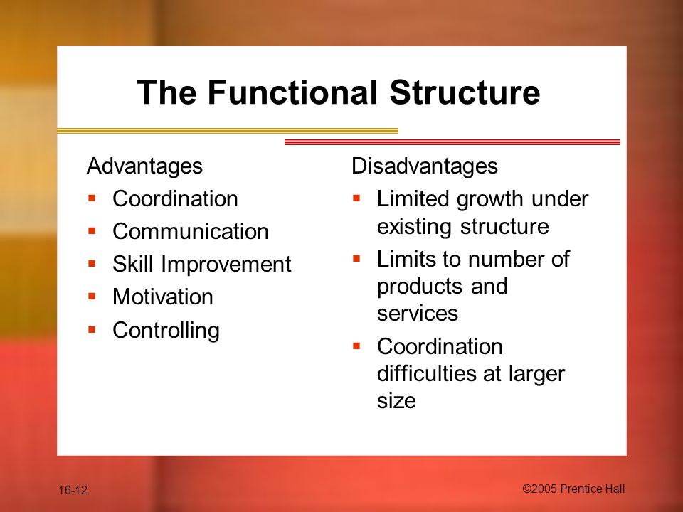 16-12 ©2005 Prentice Hall The Functional Structure Advantages  Coordination  Communication  Skill Improvement  Motivation  Controlling Disadvantages  Limited growth under existing structure  Limits to number of products and services  Coordination difficulties at larger size
