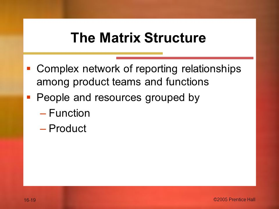 16-19 ©2005 Prentice Hall The Matrix Structure  Complex network of reporting relationships among product teams and functions  People and resources grouped by –Function –Product