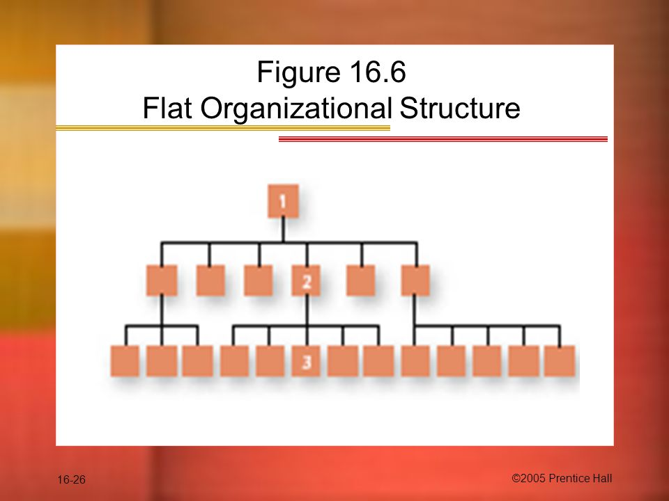 16-26 ©2005 Prentice Hall Figure 16.6 Flat Organizational Structure