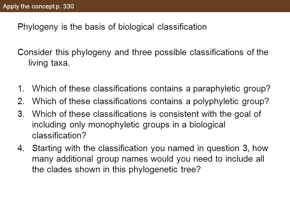 Apply the concept p. 330 Phylogeny is the basis of biological classification Consider this phylogeny and three possible classifications of the living