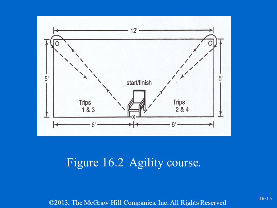 ©2013, The McGraw-Hill Companies, Inc. All Rights Reserved 16-15 Figure 16.2 Agility course.