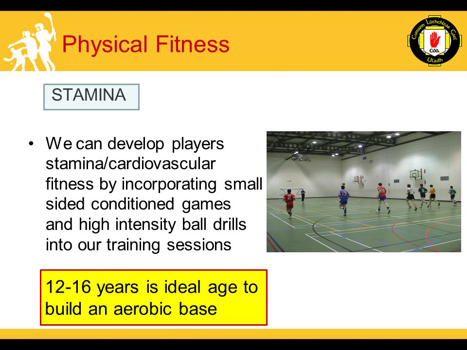 Physical Fitness STAMINA We can develop players stamina/cardiovascular fitness by incorporating small sided conditioned games and high intensity ball drills into our training sessions 12-16 years is ideal age to build an aerobic base