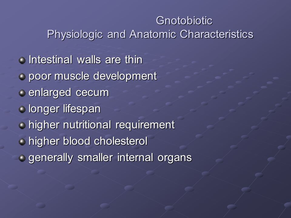 Gnotobiotic Physiologic and Anatomic Characteristics Gnotobiotic Physiologic and Anatomic Characteristics Intestinal walls are thin poor muscle development enlarged cecum longer lifespan higher nutritional requirement higher blood cholesterol generally smaller internal organs