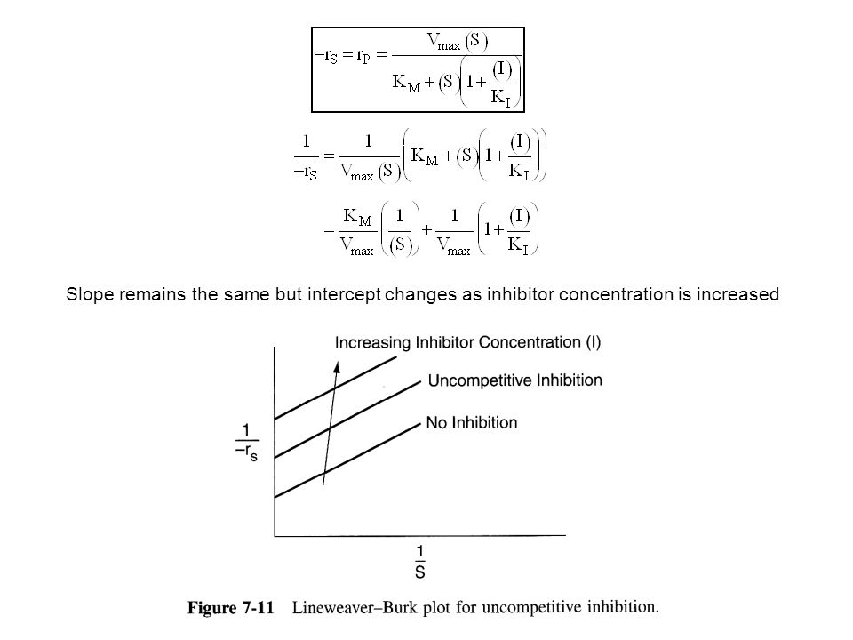 Slope remains the same but intercept changes as inhibitor concentration is increased