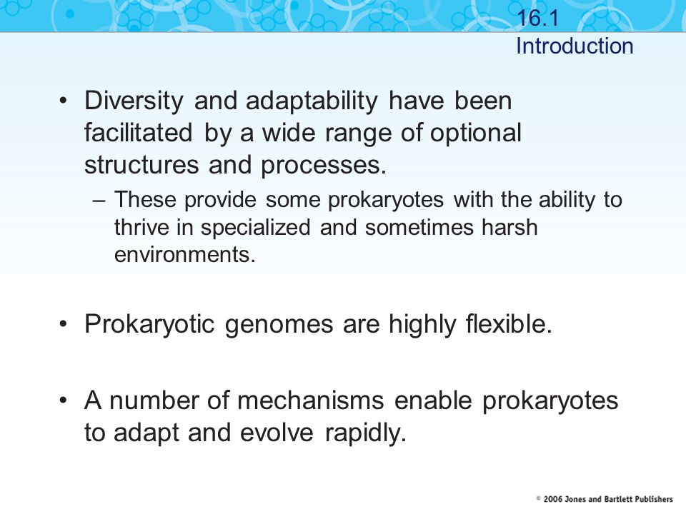 Diversity and adaptability have been facilitated by a wide range of optional structures and processes. –These provide some prokaryotes with the abilit