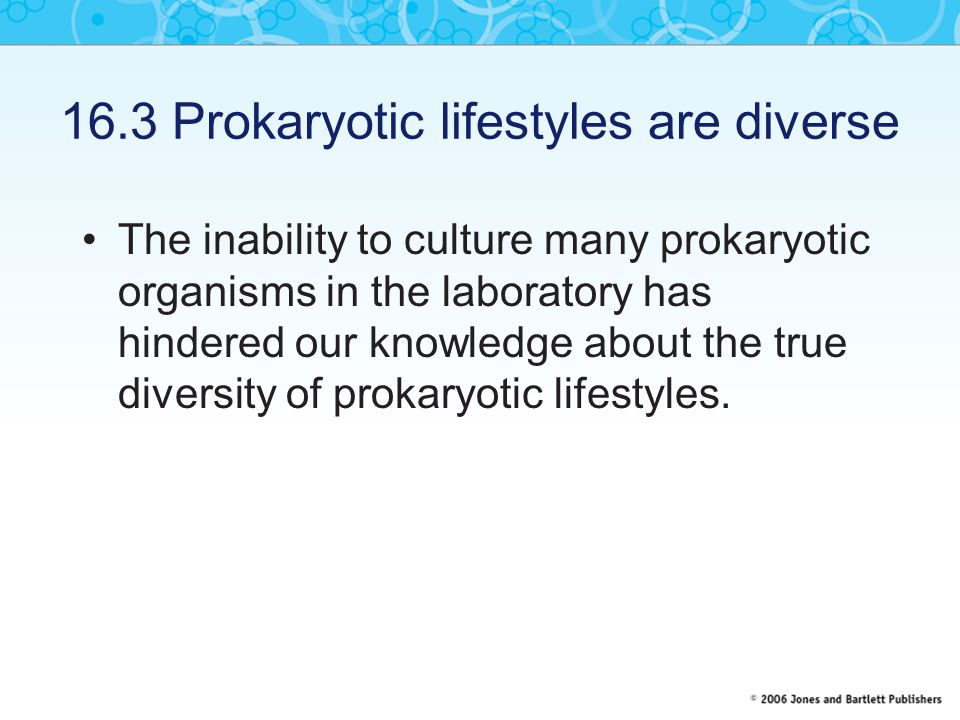 16.3 Prokaryotic lifestyles are diverse The inability to culture many prokaryotic organisms in the laboratory has hindered our knowledge about the true diversity of prokaryotic lifestyles.