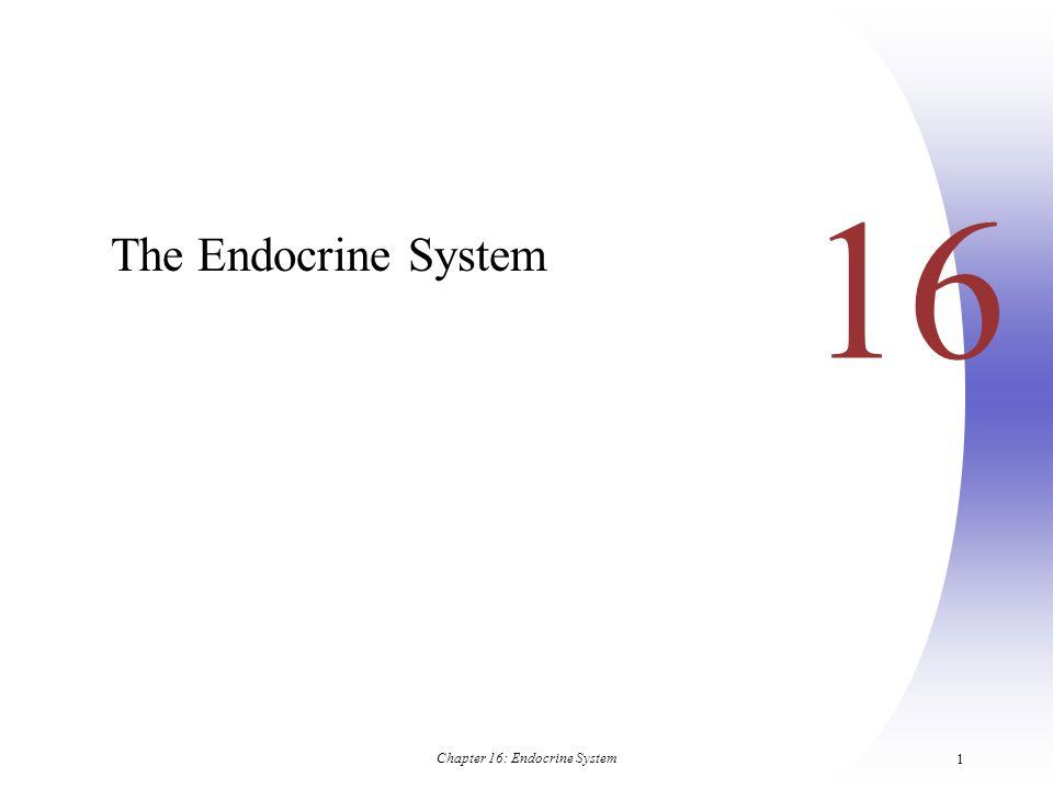 Chapter 16: Endocrine System 62 Parathyroid Glands Figure 16.10a