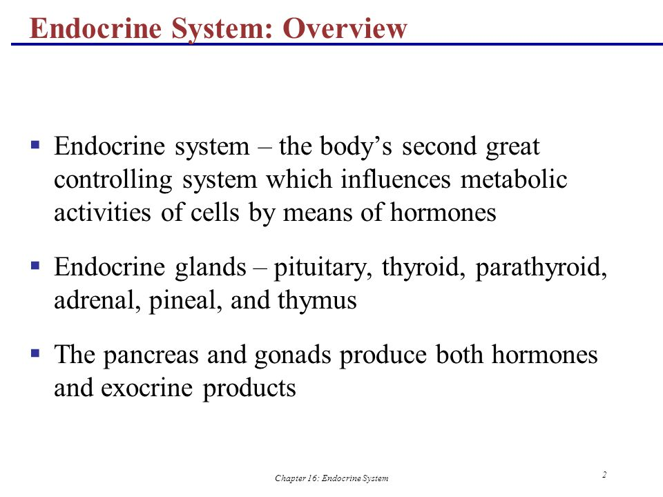 Chapter 16: Endocrine System 23 Humoral Stimuli  Humoral stimuli – secretion of hormones in direct response to changing blood levels of ions and nutrients  Example: concentration of calcium ions in the blood  Declining blood Ca 2+ concentration stimulates the parathyroid glands to secrete PTH (parathyroid hormone)  PTH causes Ca 2+ concentrations to rise and the stimulus is removed