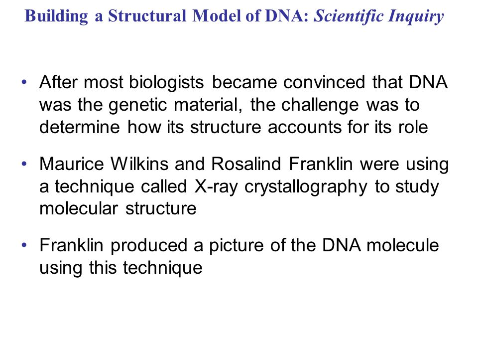 Building a Structural Model of DNA: Scientific Inquiry After most biologists became convinced that DNA was the genetic material, the challenge was to