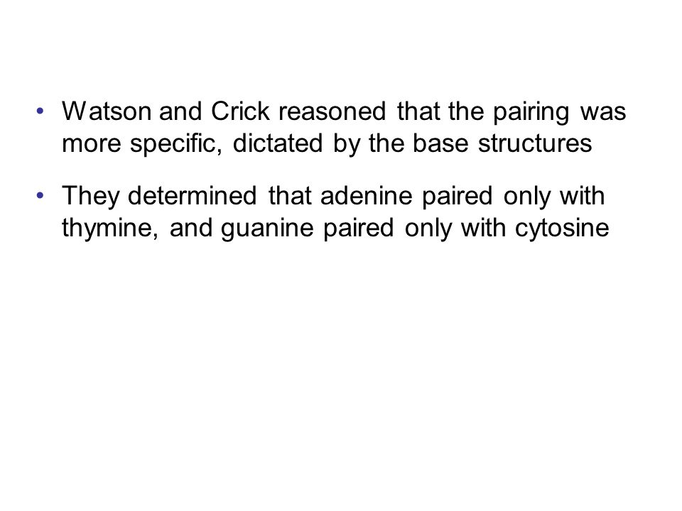 Watson and Crick reasoned that the pairing was more specific, dictated by the base structures They determined that adenine paired only with thymine, a
