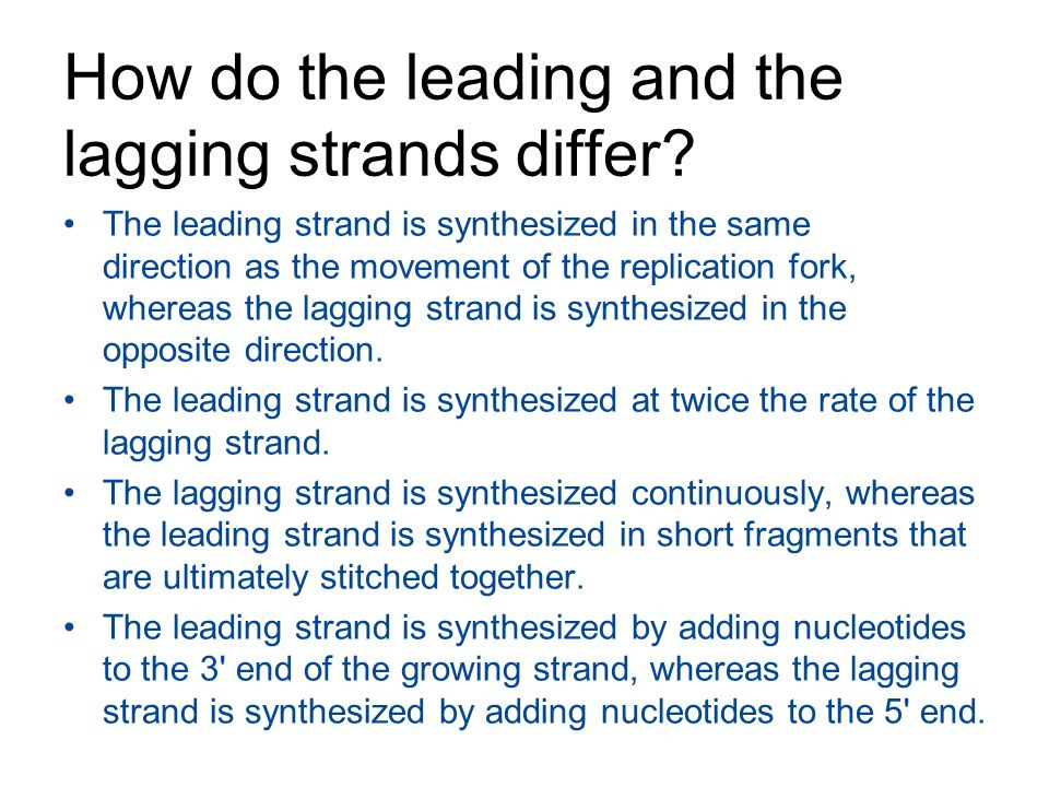 How do the leading and the lagging strands differ? The leading strand is synthesized in the same direction as the movement of the replication fork, wh
