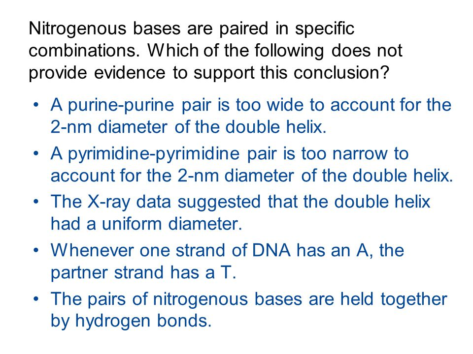Nitrogenous bases are paired in specific combinations. Which of the following does not provide evidence to support this conclusion? A purine-purine pa