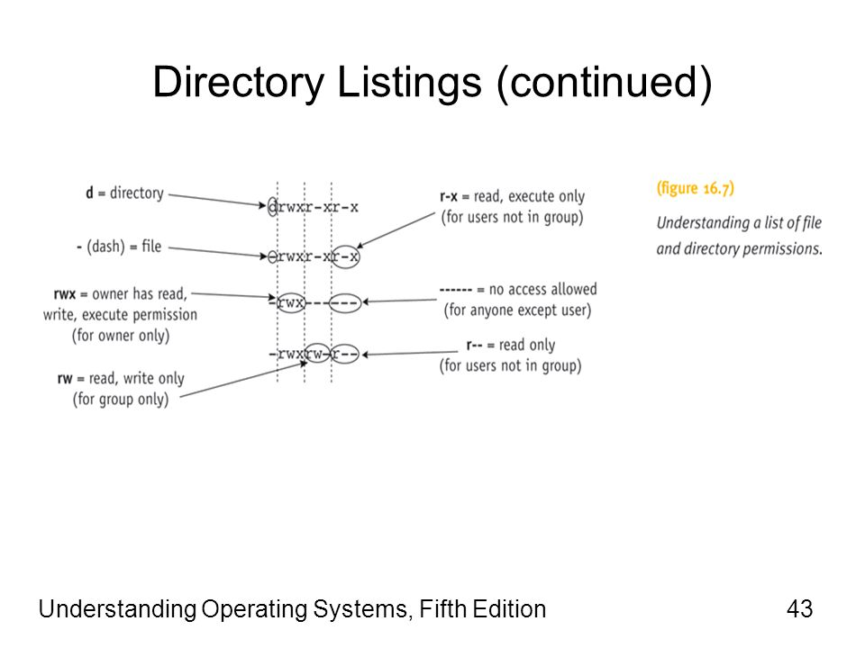 Understanding Operating Systems, Fifth Edition43 Directory Listings (continued)