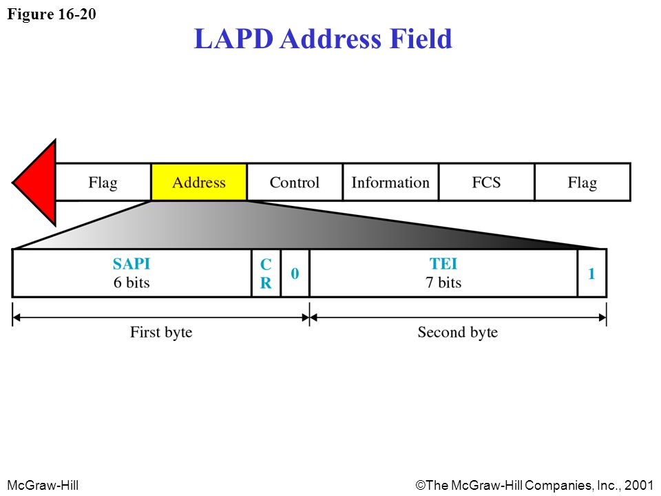 McGraw-Hill©The McGraw-Hill Companies, Inc., 2001 Figure LAPD Address Field